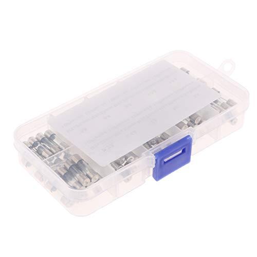 H HILABEE 100 Packung Feinsicherung Glas G Sicherung 5x20mm F Glassicherung träge G-Sicherung 250V mit Aufbewahrungsbox