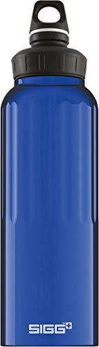 Top 10 SIGG Trinkflasche 1 5 Liter Edelstahl – Flachmänner