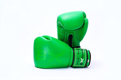 Top 8 Boxhandschuhe Grün – Punchinghandschuhe