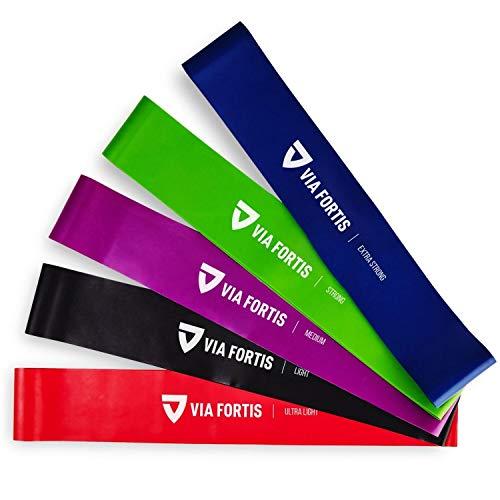 Top 10 VIA FORTIS Fitnessbänder Set – Fitnessbänder
